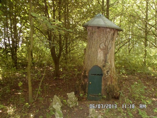 Low Costa Mill Cottages: woodland walks