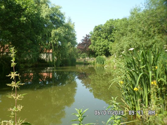 Low Costa Mill Cottages: pond