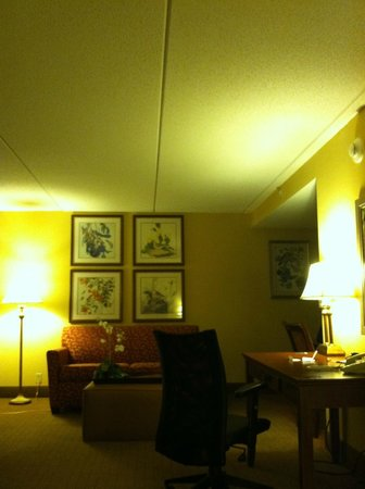Homewood Suites by Hilton Chesapeake-Greenbrier: Desk and sitting area