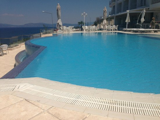 Lavista Boutique Hotel: Pool Is Immaculate!