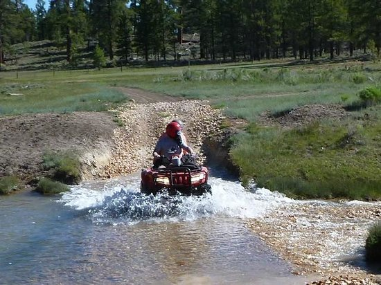 Ruby's ATV Tours