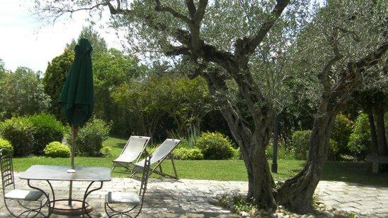 Baumaniere les Baux de Provence: Sun-kissed patios surround a sparkling pool