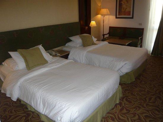 Safir Hotel Cairo: camera