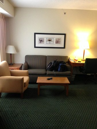 Residence Inn Dallas DFW Airport North/Irving: Sitting area