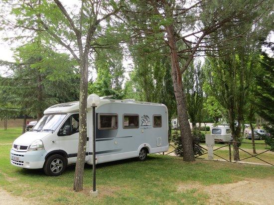 Camping Village Il Poggetto: Our Pitch