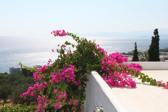 Elounda Ilion Hotel: view of bay
