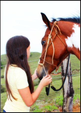 Sabine's Smiling Horses: my daughter with princessa