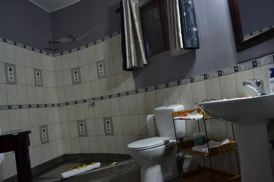 Dashir Lodge & Safaris: Bathroom