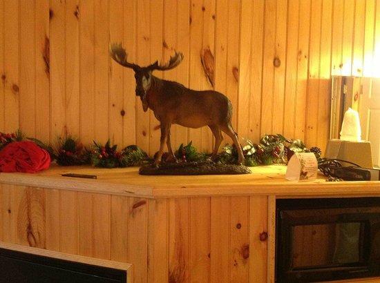Vacationland Inn : Theme Of Maine