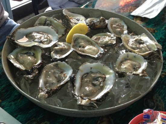 Bunky's Raw Bar & Seafood Grille: Oysters!