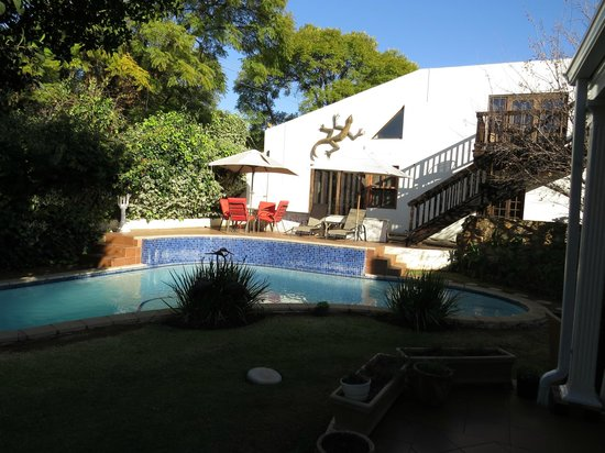Lucky Bean Guesthouse: Pool