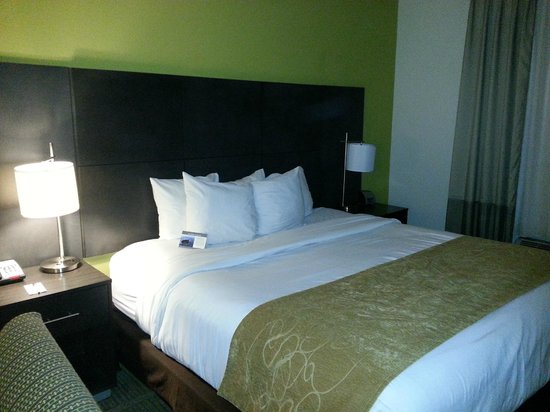 Comfort Suites Miami Airport North: King Size Bed