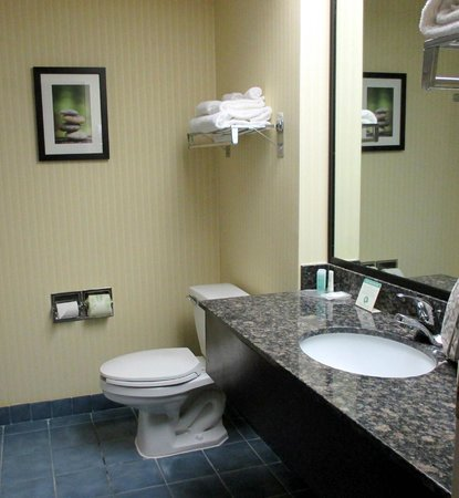 Comfort Suites Fort Wayne: Large bathroom