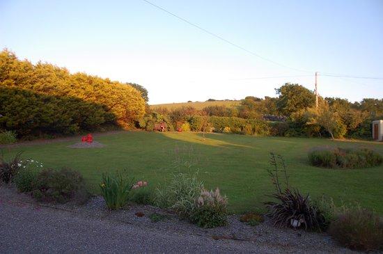 Sunville House : The garden.