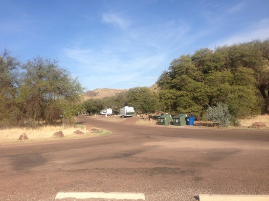 Davis Mountains State Park: Great pull through sites.