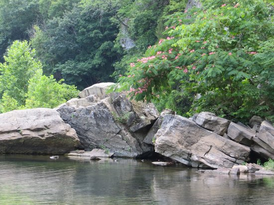 อาร์คันซอ: Buffalo River - Steel Creek Campground
