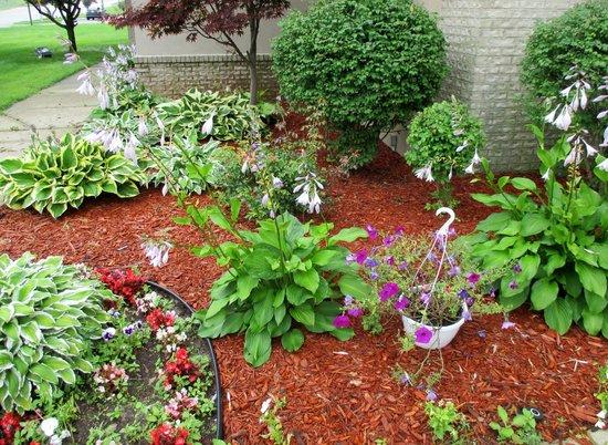 Baymont Inn & Suites Flat Rock: Nice plantings outside