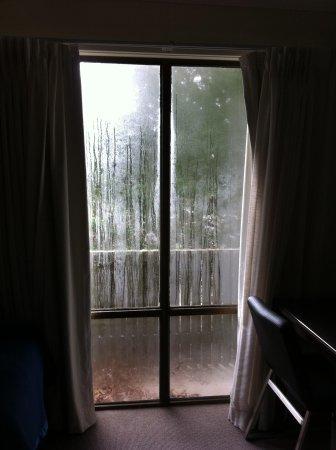 Tall Trees Hotel: Rm 211