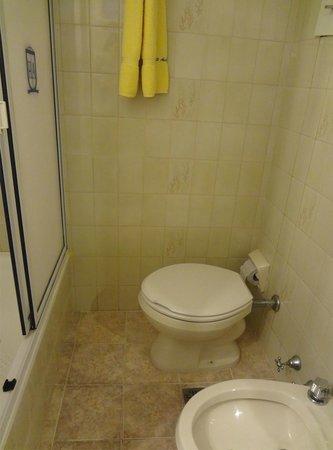 Hotel Avenida: Banheiro muito bom. Tem algumas formigas pq é muito quente devido a falta de ar condicionado nos