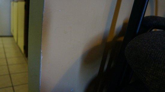 Rodeway Inn Virginia Beach: substance on walls
