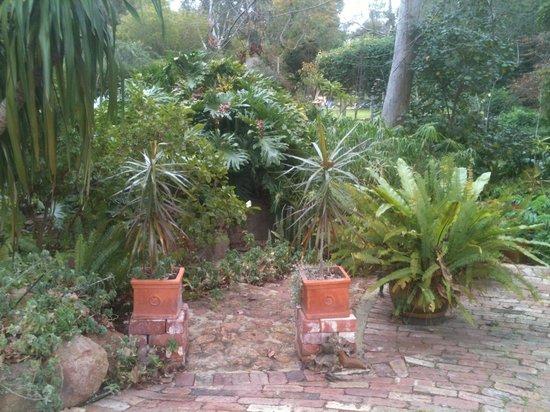 Possum Creek Lodge : The Garden