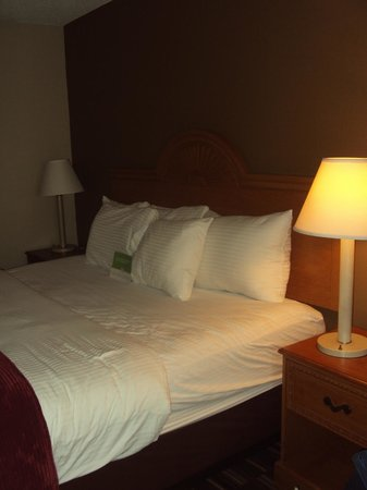 Country Inn & Suites: Bed