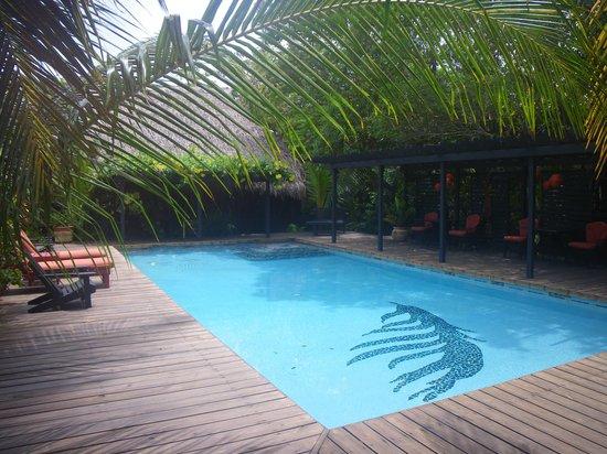 Singing Sands Inn: Pool