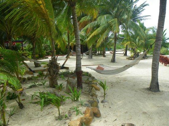 Singing Sands Inn : Beach Area