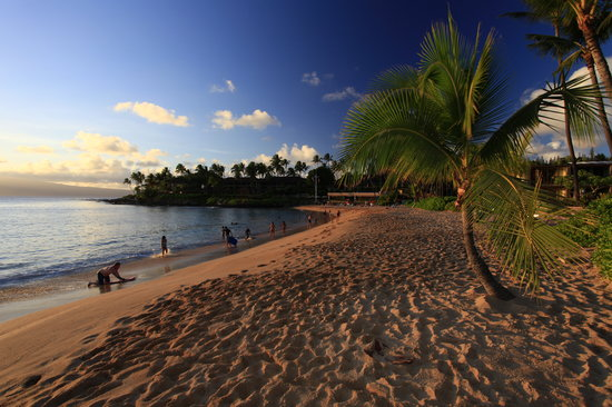 Napili Kai Beach Resort: The beautiful beach just before sunset - tunliweb.no