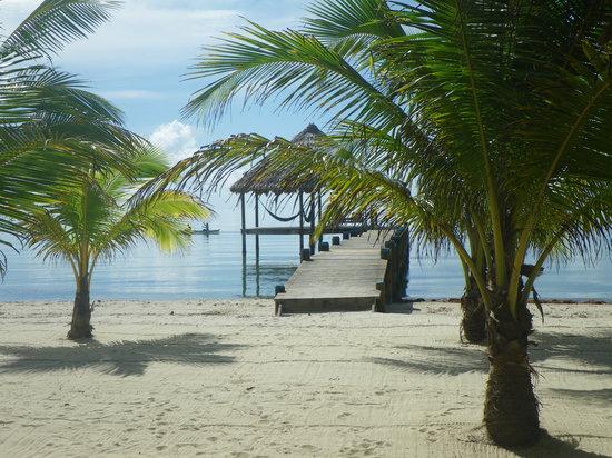 Maya Beach Hotel Bistro : Beach View