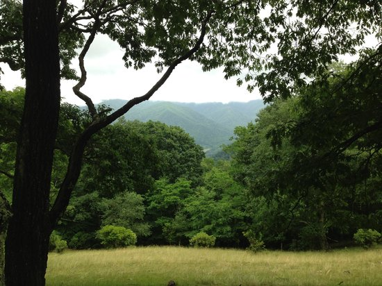 The Cataloochee Ranch : Hiking along Sheep Pasture Rd at Cataloochee