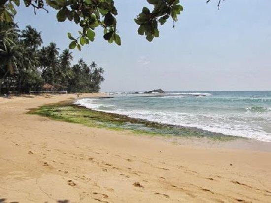 Shanthi Beach Resort: back side beach