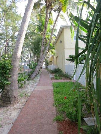 Sunrise Beach Clubs and Villas: Walkway to beach