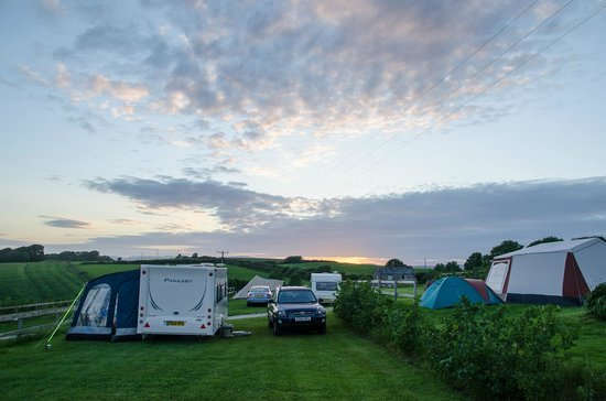 Penhale Caravan and Camping Park : Terraced Pitches