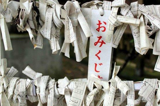 Kikuchi Shrine: Omikuji (fortunes)