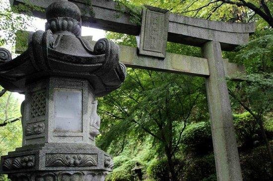 Kikuchi Shrine: Torii and lantern