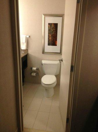 Hilton Atlanta Airport : Toilet