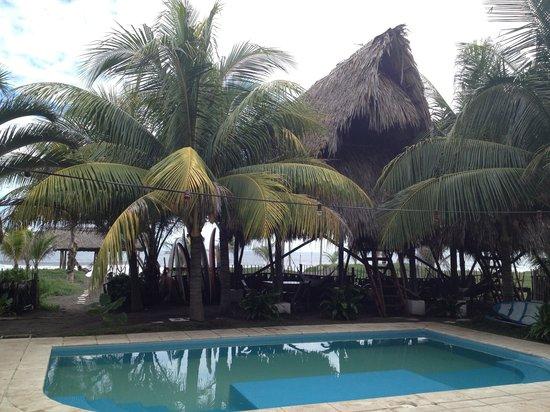 Paredon Surf House: Pool