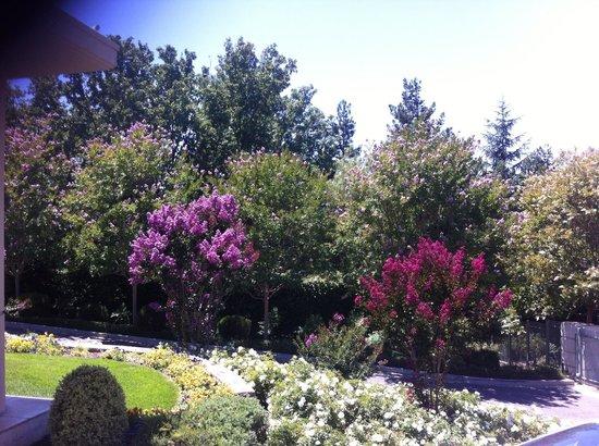 Microtel Inn & Suites by Wyndham Morgan Hill/San Jose Area: Good!