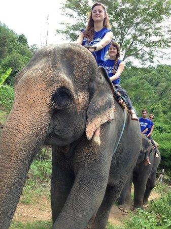 Baanchang Elephant's Paradise