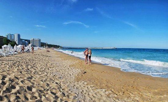 Luna Hotel: на пляже