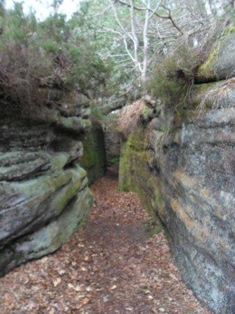 Plumpton Rocks: Little walkways with hidden swings!