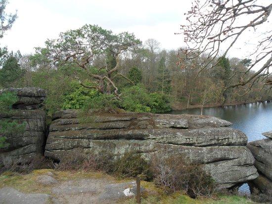 Plumpton Rocks: Gorgeous scenery.