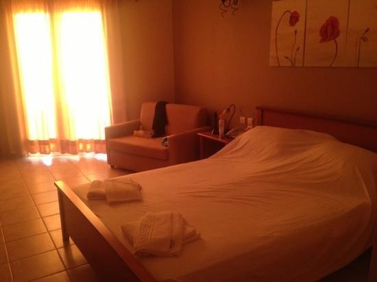 Arkadia Hotel: room