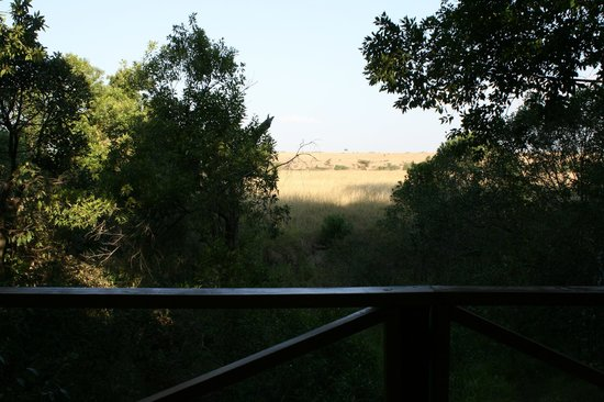 Loyk Mara Luxury Camp: View from our room