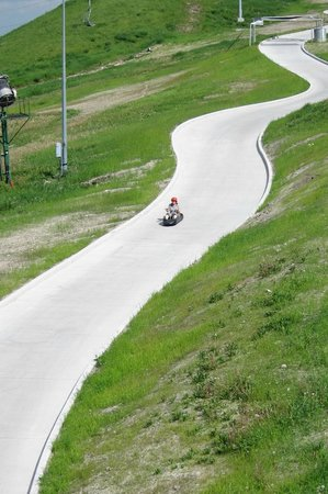 Skyline Luge Calgary : Luge going down the track