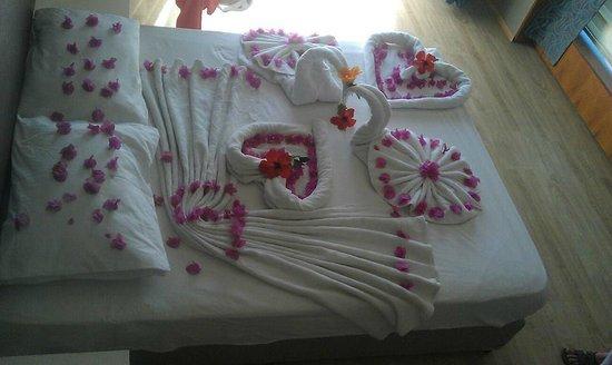 Mehtap Beach Hotel: beautiful display