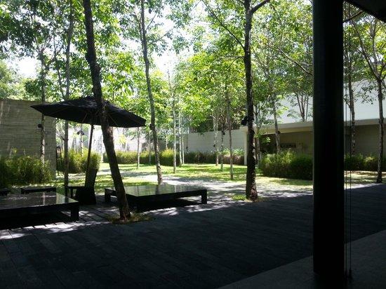SALA Phuket Resort & Spa: Reception area