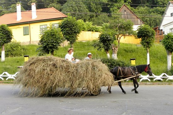 Secret Transylvania Guest House : Hay Wagon