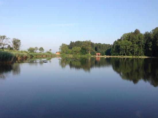 Jägerwirt Hotel & Gasthof: Lake behind the Hotel